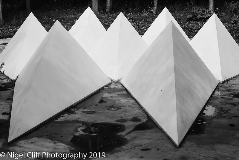 WASP National Memorial Arboretum 15 06 201900031