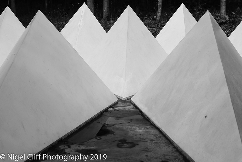 WASP National Memorial Arboretum 15 06 201900030
