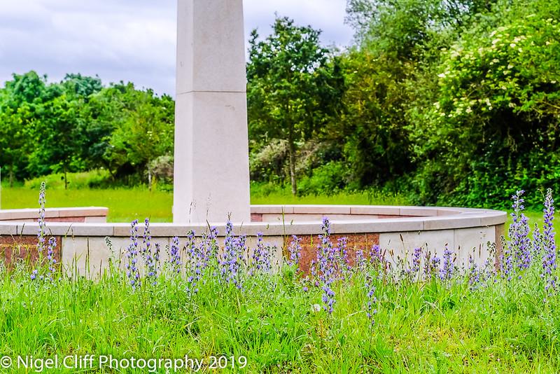 WASP National Memorial Arboretum 15 06 201900037