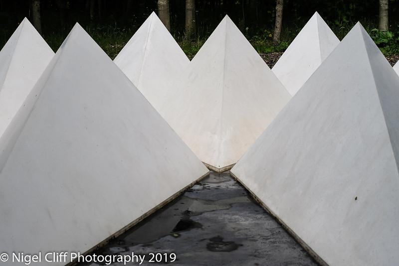 WASP National Memorial Arboretum 15 06 201900029