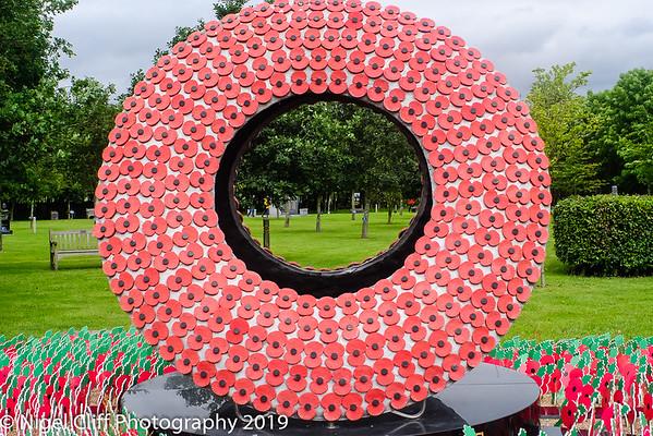 WASP National Memorial Arboretum 15 06 201900061
