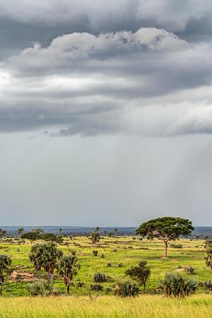 Murchison Falls Landscape