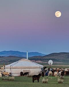Nomad Moon