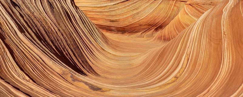 The Wave Panorama