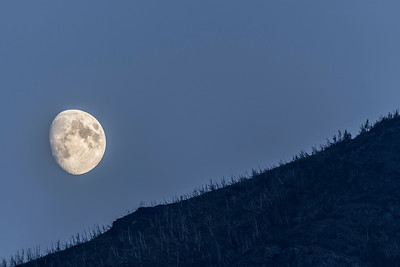 Moonlit Mountainside