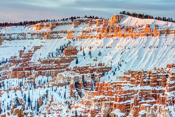 A Cold Morning in Bryce