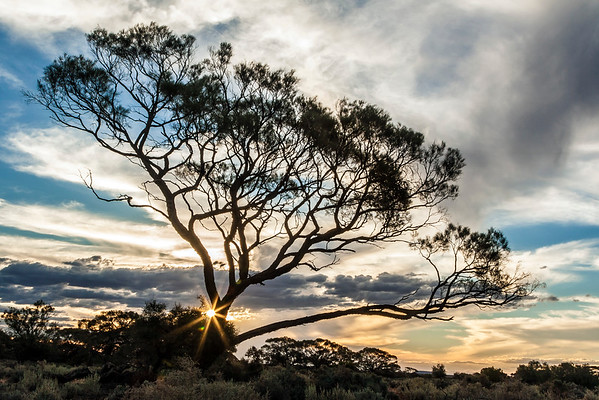 South Australia Sunset