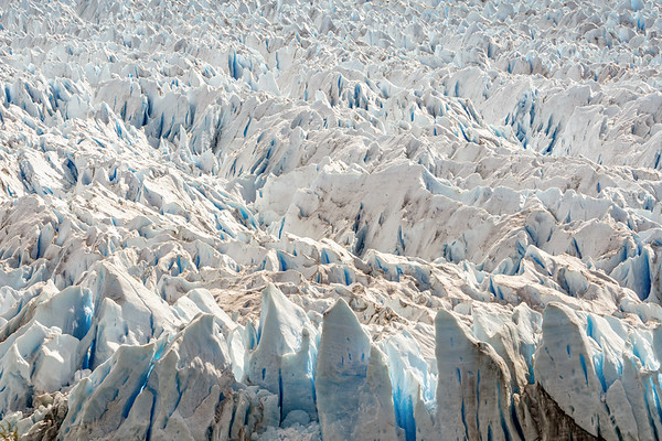 Endless Icefield