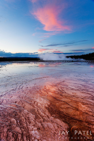 Lower Geyser Basin, Yellowstone National Park Wyoming (WY), USA