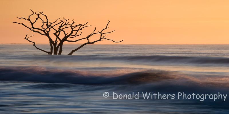 High Tide - Botany Bay