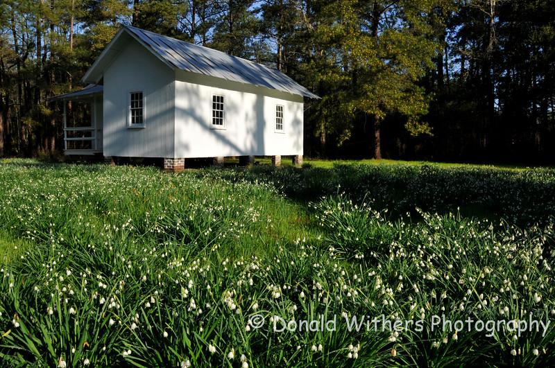 Old Slave Dwelling - Friendfield Village
