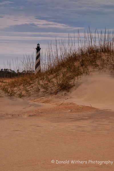 Cape Hatteras Lighthouse Dunes