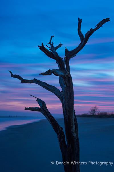 Hobcaw Sunset | Hobcaw Barony Beach