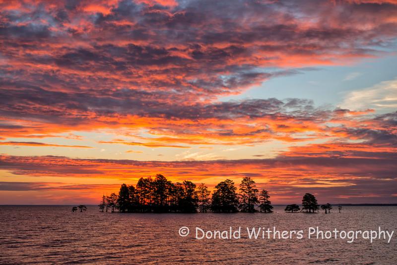 Sunrise  -  Lake Mattamuskeet
