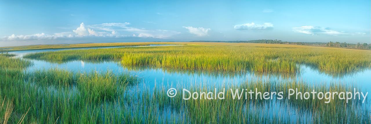 Clambank Marsh Panoramic