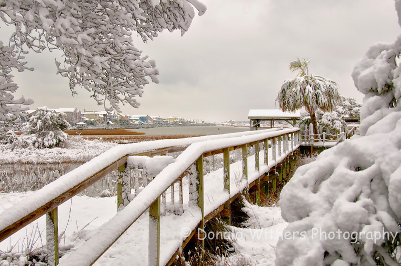 Winter in Pawleys Island