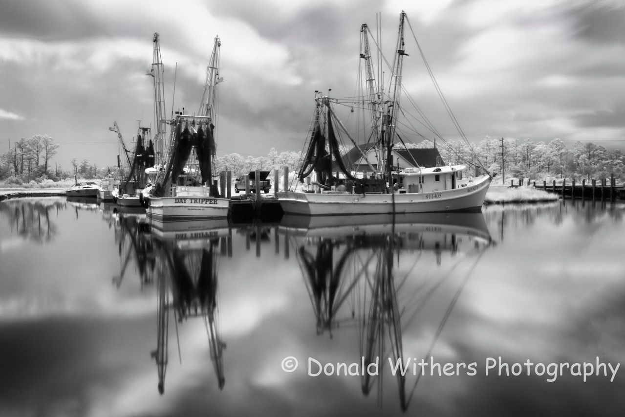 Shrimp Boats