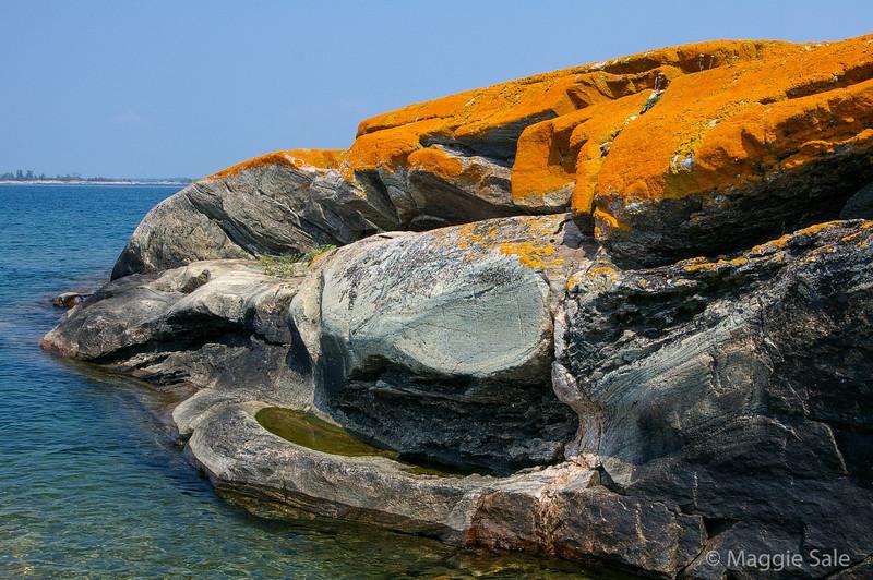 Orange Lichen Rock