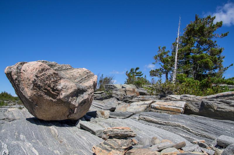 Large Erratic Rock