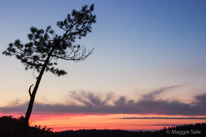 Sunset, Massassauga Provincial Park