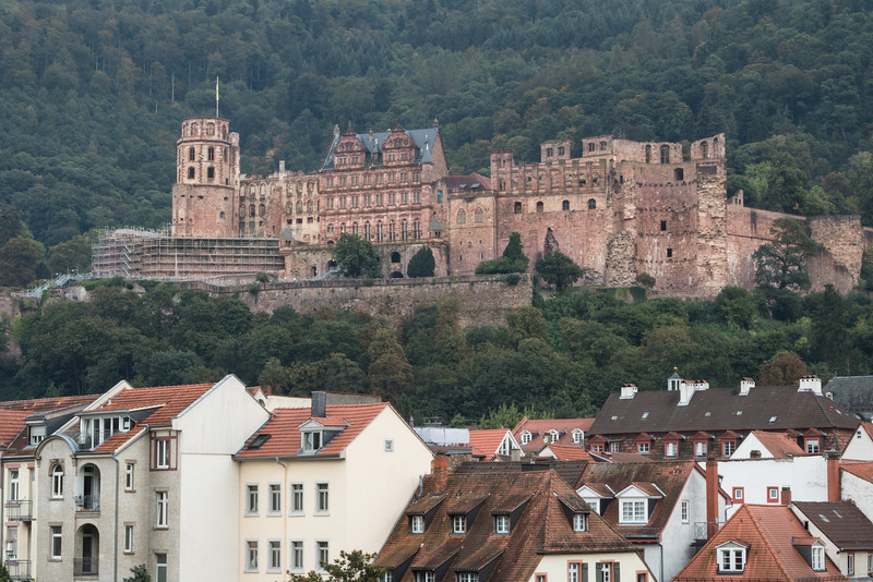 The castle in Heidelberg