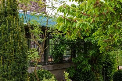 la chambre verte | the green room