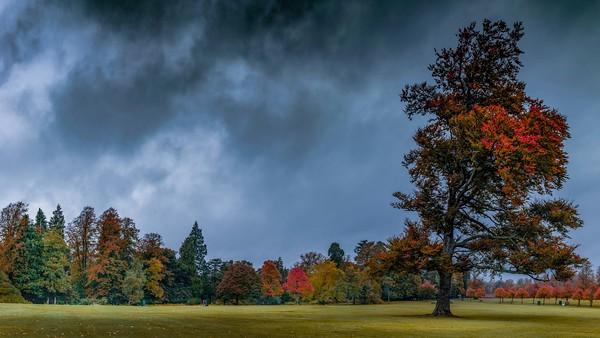Rouken Glen Park Autumn day Glasgow