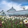 Botanic gardens in spring