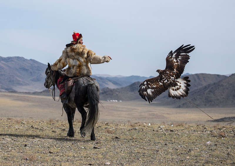 Golden Eagle Festival, Mongolia