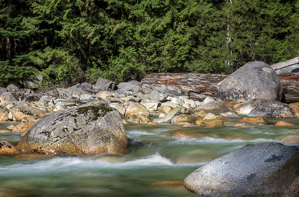 Gold Creek in Golden Ears Park, BC.