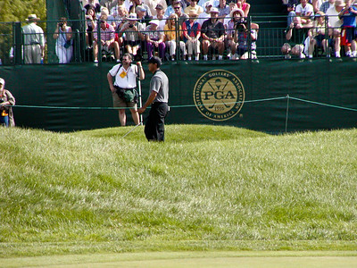 Tiger Woods on hole 18 green