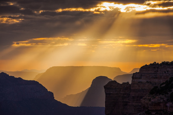 Suns rays paint the canyon with golden light