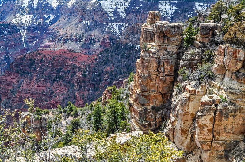 Grand Canyon Winter Scene