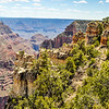 Grand Canyon Vegetation