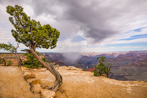 South Rim, Grand Canyon, AZ