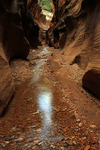 Willis Creek Narrows