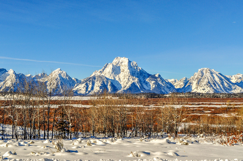Elk Range & the Grand Tetons