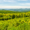 Colorful Blue Ridge View