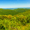 Blue Ridge & the Shenandoah