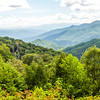 Great Smoky Landscape