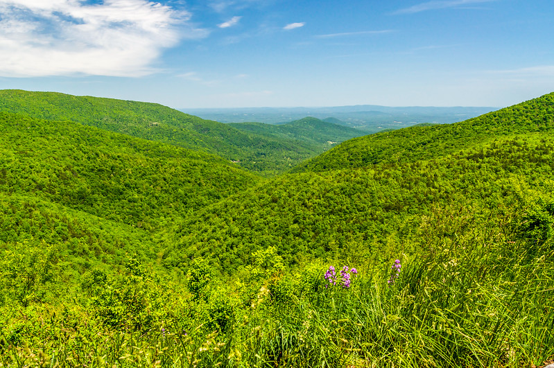 Blue Ridge to the Shenandoah