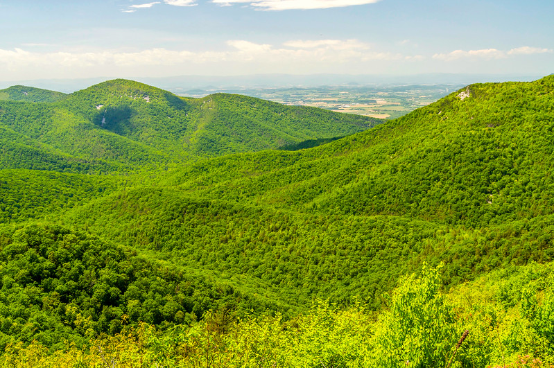 Mountains & Shenandoah Farms