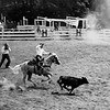 One of the many rodeos held at the Double H Ranch