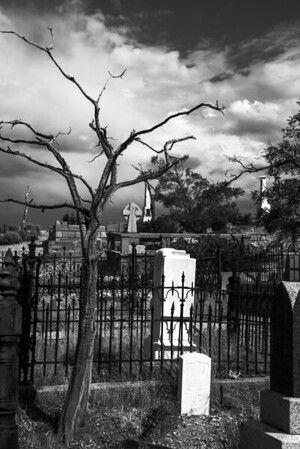 Black and white image of a spooky grave yard