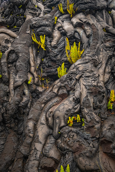 Lava Wall // Volcano, HI