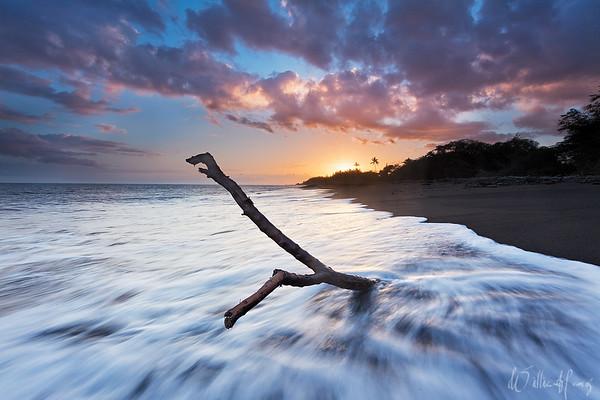 Black Sand Sunset