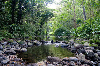 Stream in Waipio