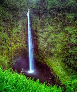 Aloha Hawai'i