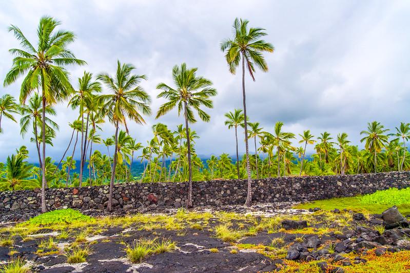 Volcanic Rock Wall at Pu'uhonua o Honaunau National Historic Park