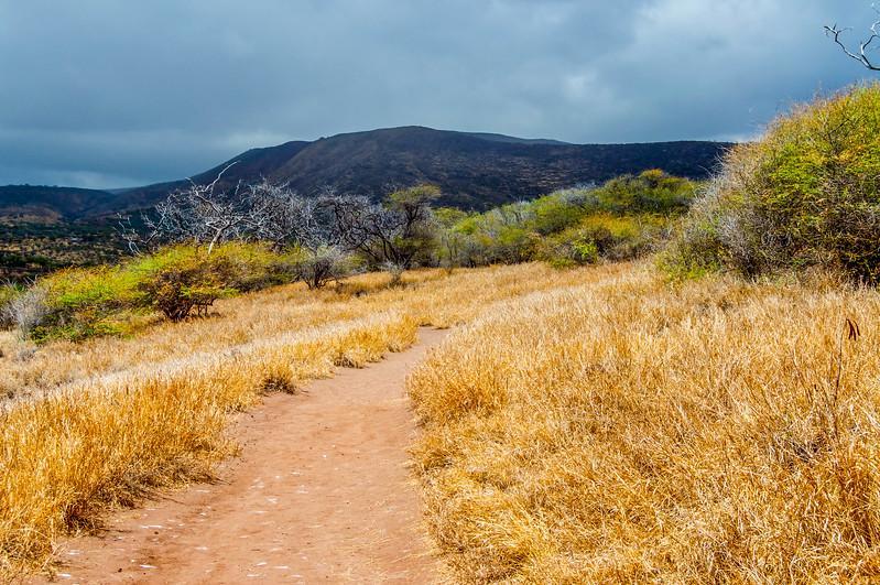 Lanai Trail